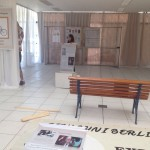 Montagem da Exposição História Giovanni Berlinguer  - Uma história de luta pelo direito a Saúde